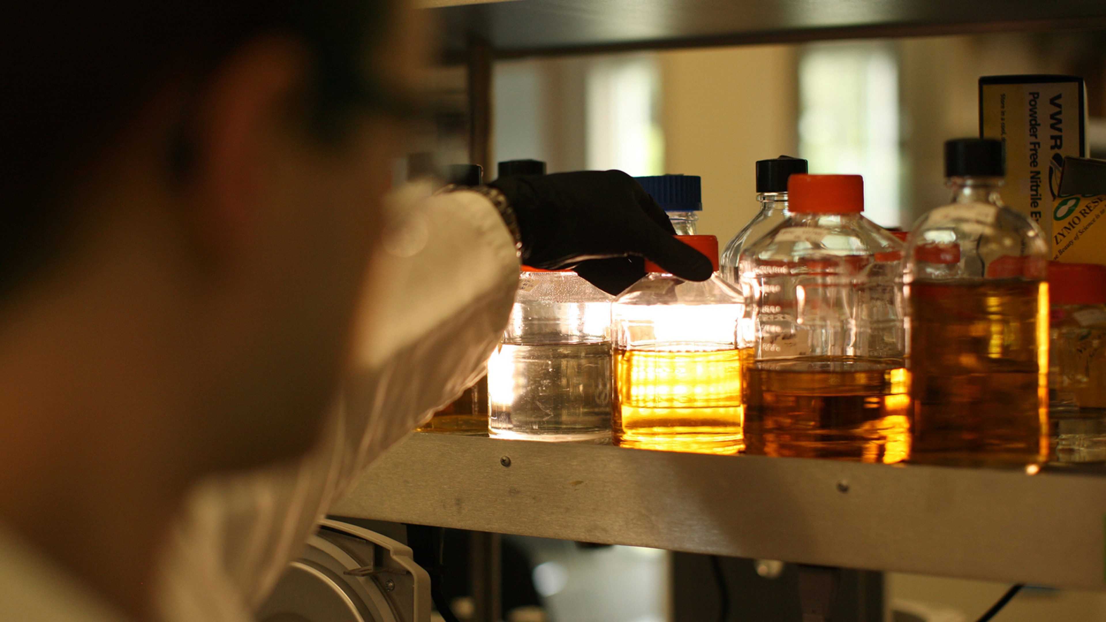 Scientist selects a bottled sample