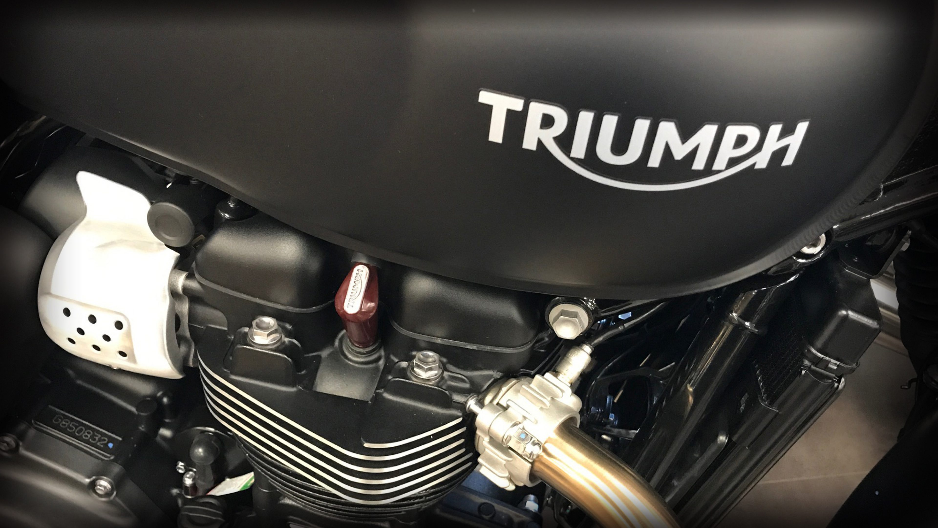 Triumph Partnership